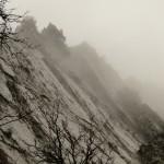 утенний туман